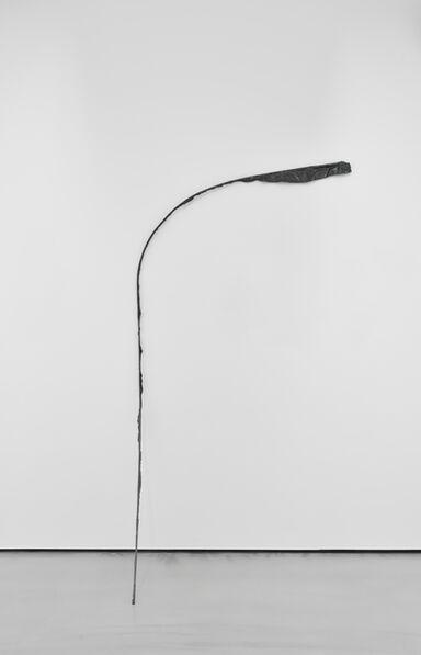 Michelle Lopez, 'Flag Series', 2014