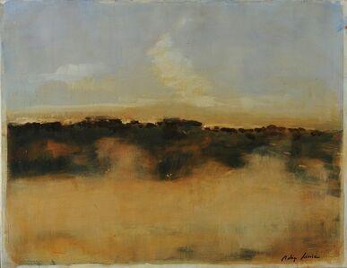 Rodrigo Ferreira, 'Paysage sous le volcon II', 2014