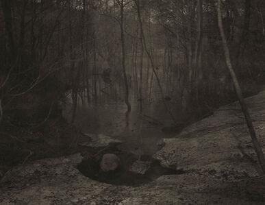 Takeshi Shikama, 'Silent Respiration of Forests - Japan:  Harudakenuma #17', 2006