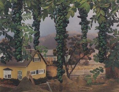 "Gregory Crewdson, '""Untitled (Natural Wonder Series)""', 1995"