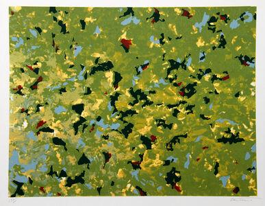 Domenick Turturro, 'Fern Hills', 1980