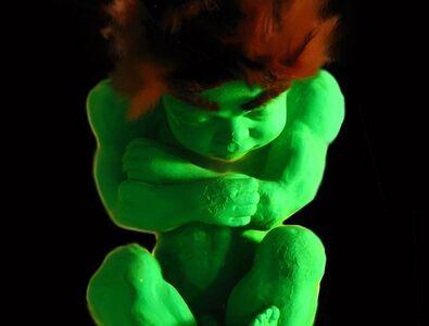 Alexandre Nicolas, 'Hulkfoetus', 2007