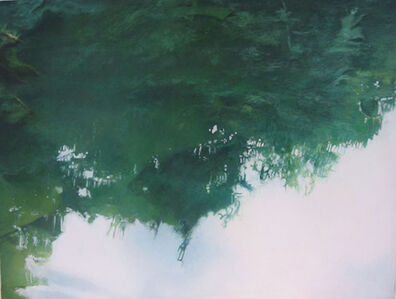 Emma Tapley, 'Inverted Forest', 2007