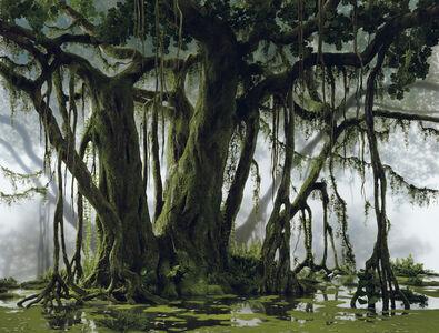 Didier Massard, 'Mangrove', 2003