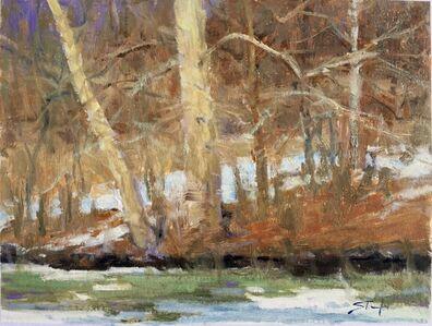 John Stanford, 'Snow, IV', ca. 2017