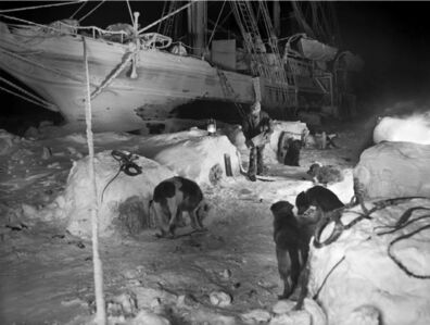 Frank Hurley, 'Kennels and dogs on the ice at night', 1914-1917