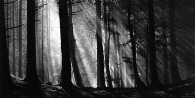 Robert Longo, 'Untitled (The Ridge Forest)', 2019