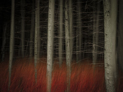 Valda Bailey, 'Into the Red', 2012-2019