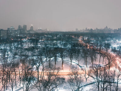 Josef Hoflehner, 'Central Park Winter Night', 2014