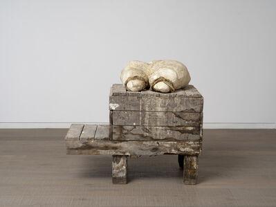 Peter Buggenhout, 'Weke delen #2', 2000