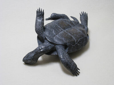 Mark Calderon, 'Untitled (tortoise)', 2010
