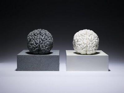 Angela Palmer, 'Brains', 2012