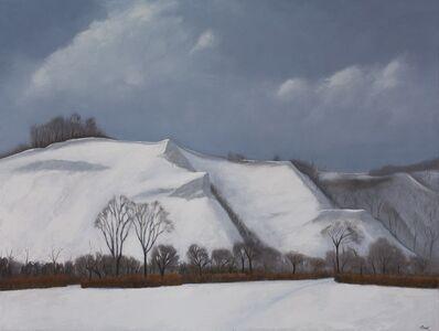 Malcolm Rains, 'The Scarborough Bluffs, Winter 2020', 2020