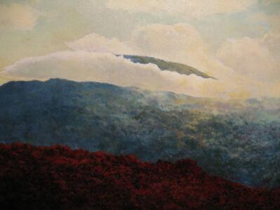 Douglas James Maguire, 'Highpoint Halo'