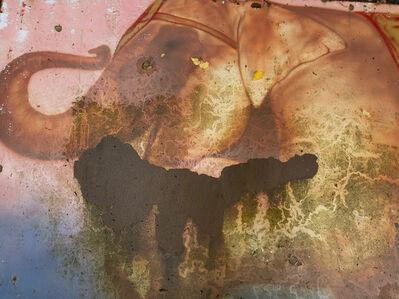 David Coventry, 'Abandoned #1', 2017
