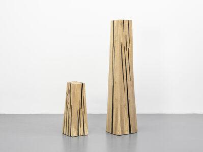 David Nash, 'Lined Beech Columns', 2019