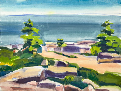 John Goodrich, 'Trees and Rocks, Schoodic', 2019