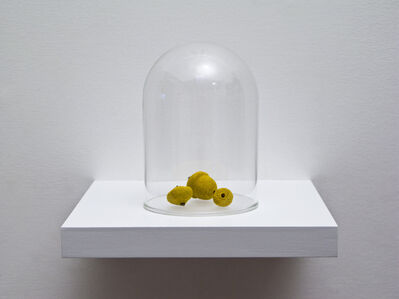 Esther Traugot, 'Seed Dome (Pin Oak Acorn)', 2017