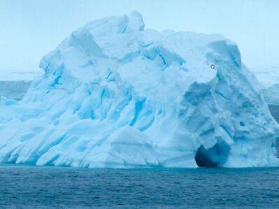 Devra Freelander, 'Touching Antarctica', 2016