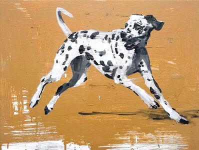 Richard Storms, 'Dalmatian', 2018