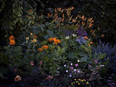 Anna Beeke, 'Midnight in the Garden #212', 2019