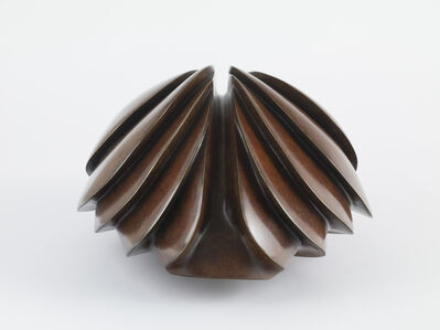 Steve Dilworth, 'Multiple Carapace', 2016