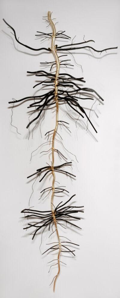 Dalya Luttwak, 'Root of Sugar Beet', 2014