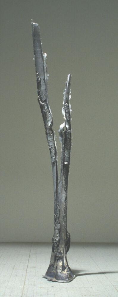 "John Ruppert, 'Split Strike - 37°21'04.5""N 105°06'22.2""W', 1995"