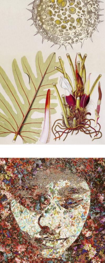 Sonia Mehra Chawla, 'History-Memory-Transfiguration: Signs of Skin 2', 2012