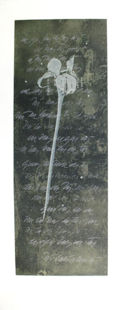 Guillermo Conte, 'El lenguaje de las flores I', 1999
