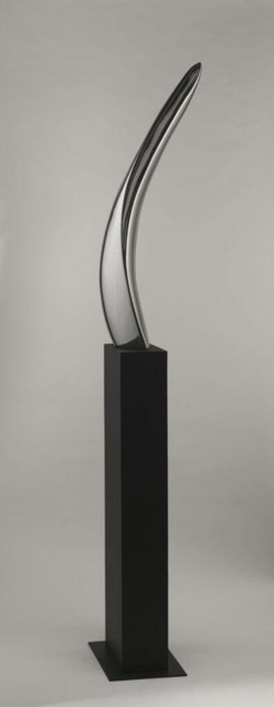 Paul Martin Wolff, 'Blade'