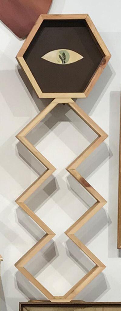 Alison Pebworth, 'Untitled 7, Cabinet Installation', 2018