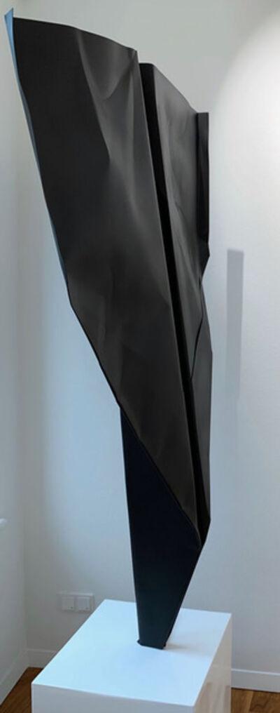 Daniele Sigalot, 'A Big Black Paper Plane', 2019