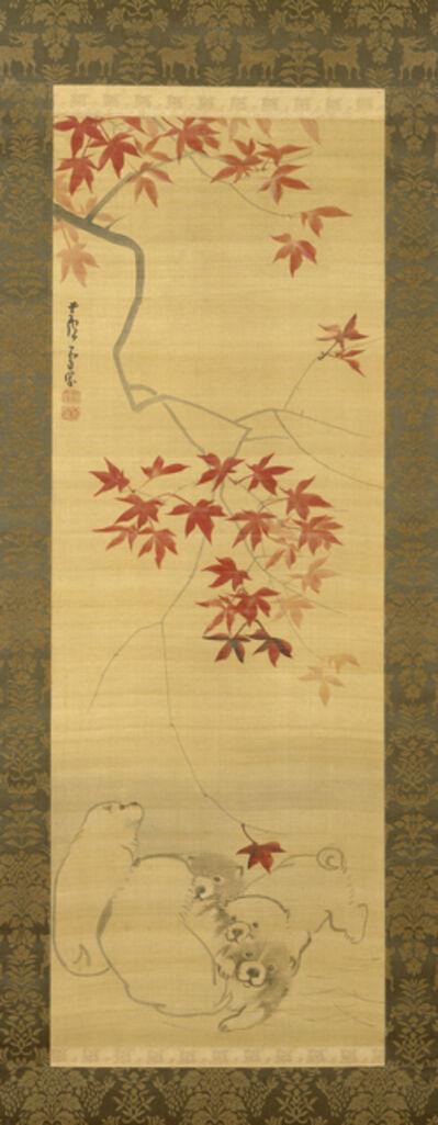 Nagasawa Rosetsu, 'Puppies Under a Maple Branch', ca. 1790