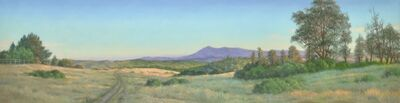 Willard Dixon, 'View From the Fire Road', 2020