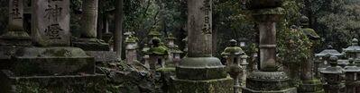 David H. Gibson, 'Toward Kasuga Shrine, Along Pathways of Lanterns(08 4923-4925)'