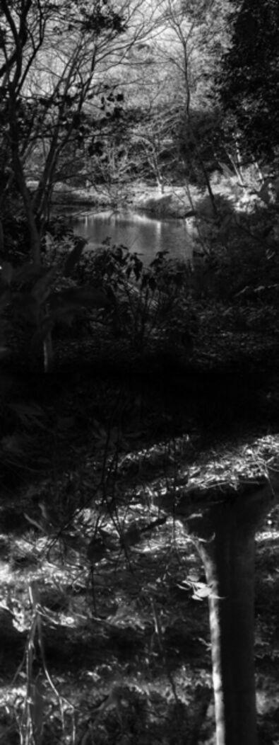 Yasuo Kiyonaga, 'Reflecting landscape 04', 2020
