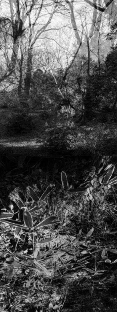 Yasuo Kiyonaga, 'Reflecting landscape 02', 2020