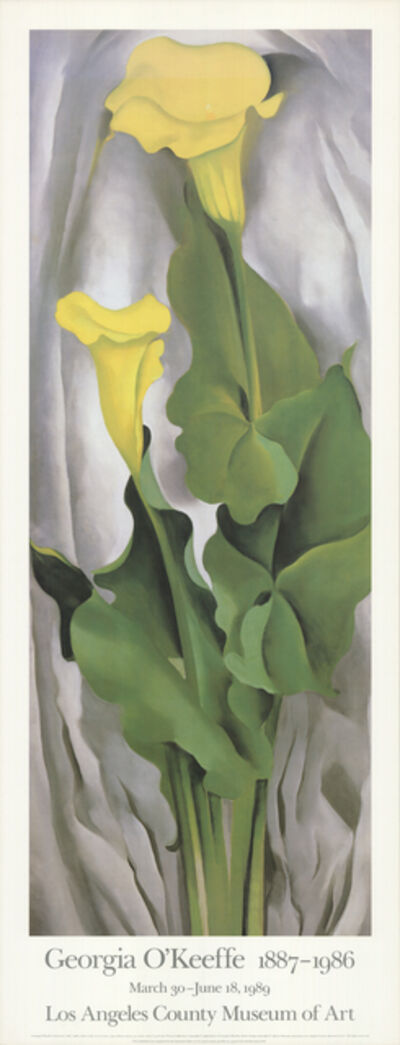 Georgia O'Keeffe, 'Yellow Calla- Green Leaves', 1989