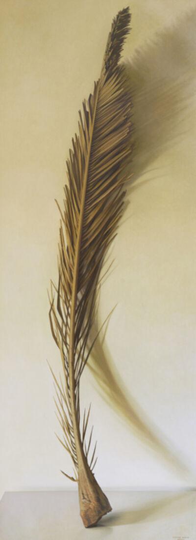 Claudio Bravo, 'Palm Frond', 2008