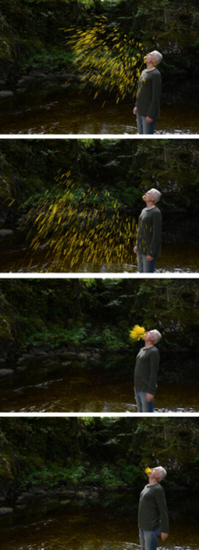 Andy Goldsworthy, 'Gorse spits, sunny, Dumfriesshire, Scotland, 30 May 2015', 2015