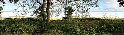 David Hockney, 'SevenYorkshire Landscapes', 2011