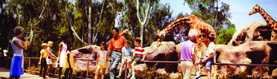 Peter Gales, 'Colorama 309, San Diego Zoo, California', Displayed 7/15/68-8/5/68