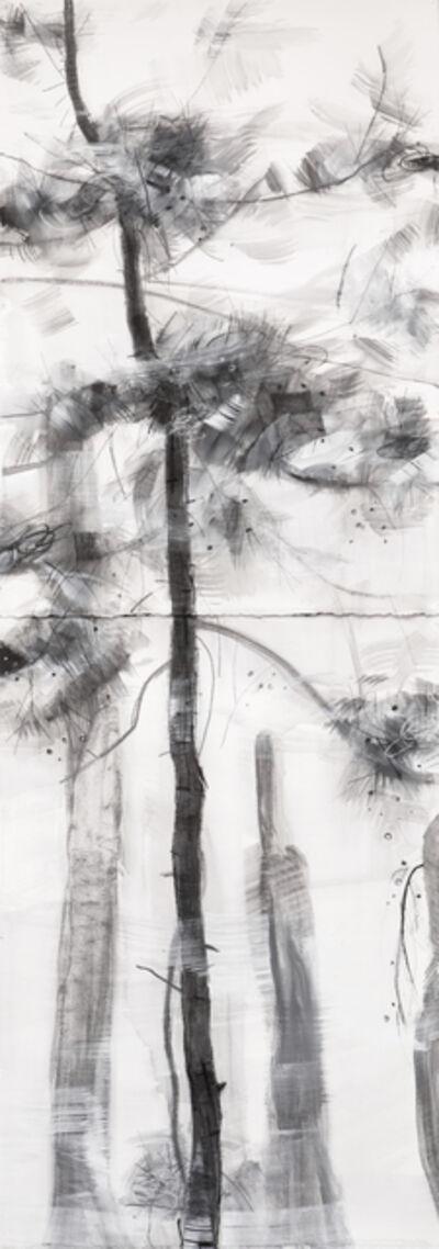 Angus Nivison, 'Young Pine, Fresh Breeze - Zhangjiajie', 2018