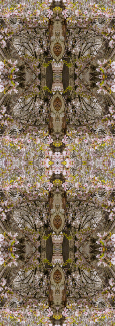 Nando Alvarez-Perez, 'Forest Lawn Cherry Blossoms', 2020