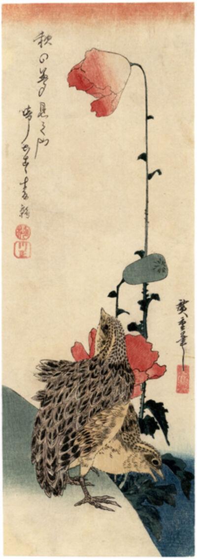 Utagawa Hiroshige (Andō Hiroshige), 'Quail and Poppies'