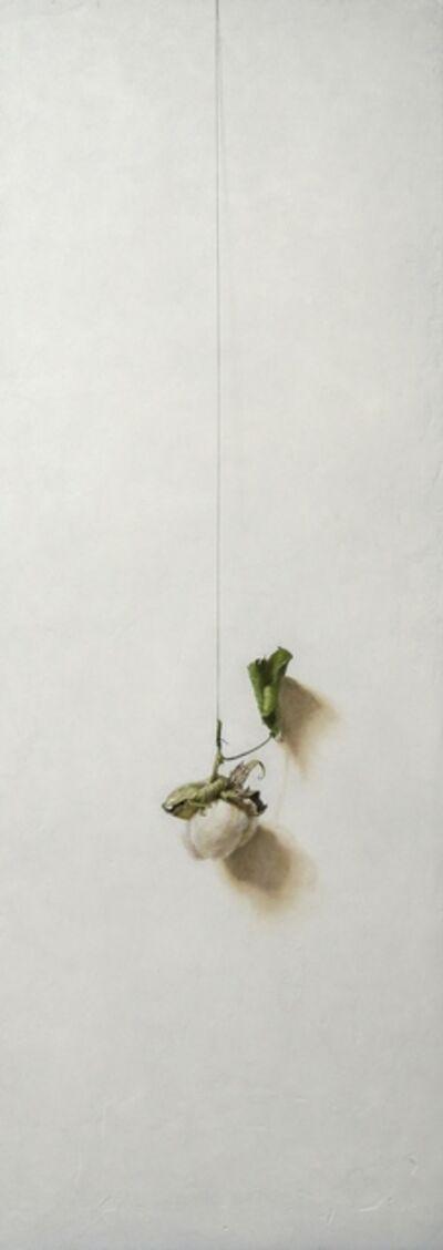 Daiya Yamamoto, 'Gift', 2019