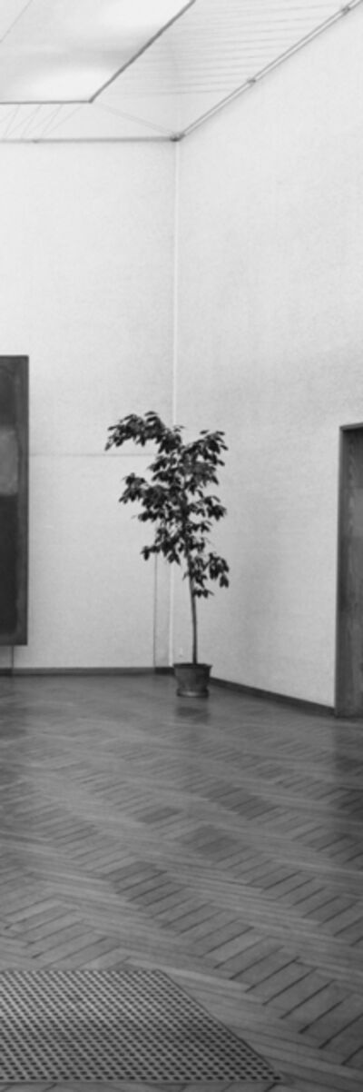 Inge Meijer, 'The Plant Collection IV', 2019
