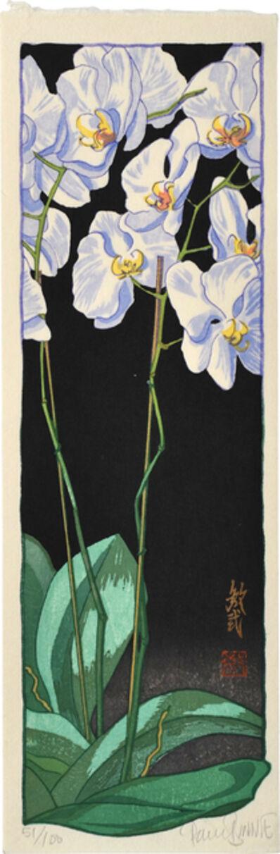 Paul Binnie, 'Orchid - Night ', 2006