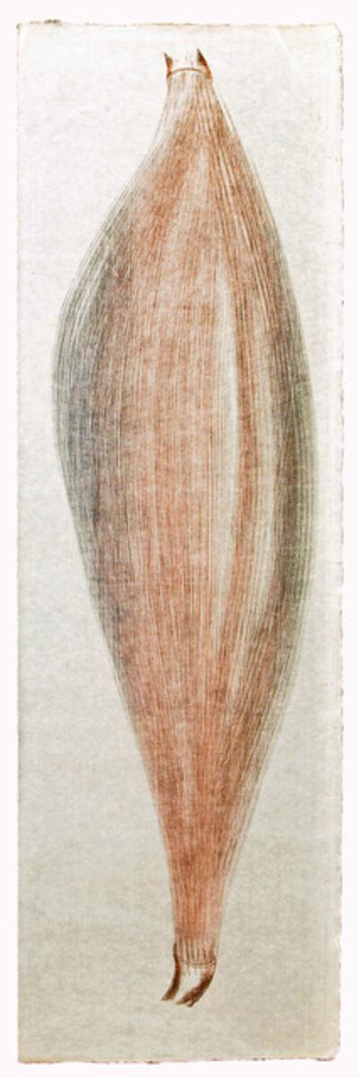 Harry Bertoia, 'Untitled (#52a)', ca. 1960s